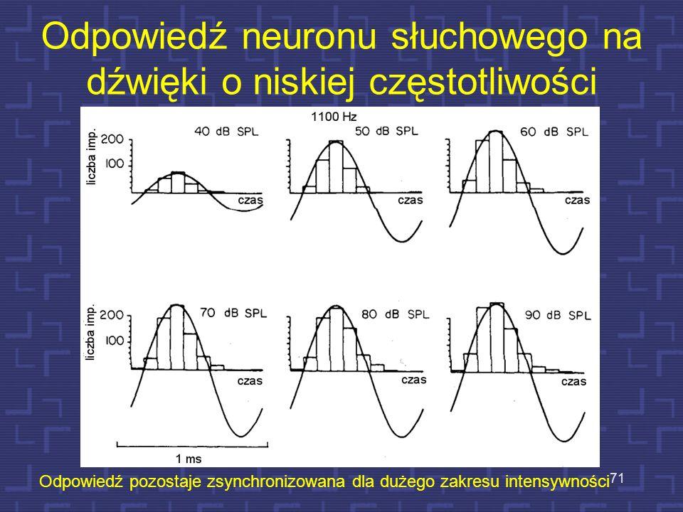 Odpowiedź neuronu słuchowego na dźwięki o niskiej częstotliwości