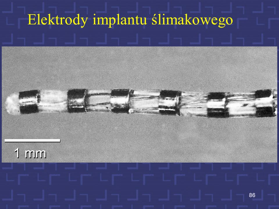 Elektrody implantu ślimakowego
