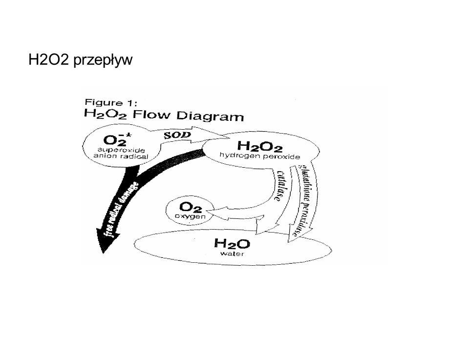 H2O2 przepływ