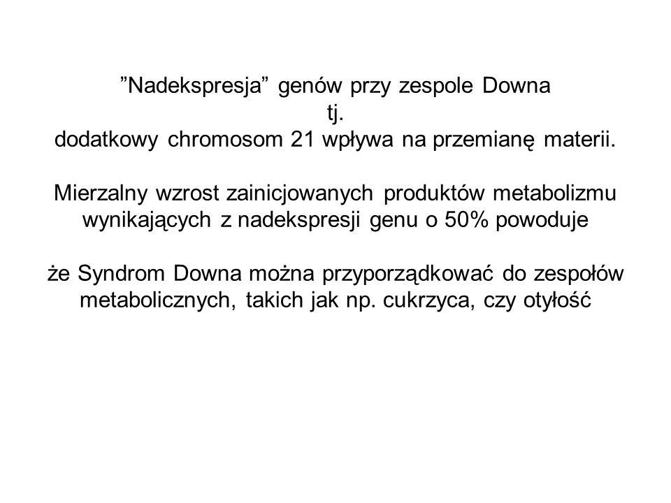 Nadekspresja genów przy zespole Downa tj