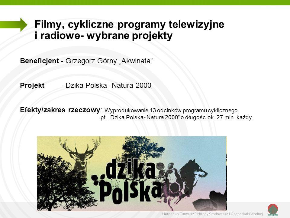 Filmy, cykliczne programy telewizyjne i radiowe- wybrane projekty