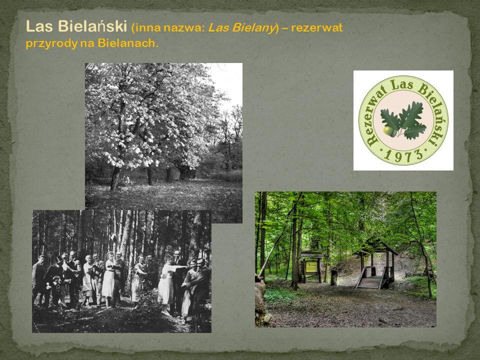 Las Bielański (inna nazwa: Las Bielany) – rezerwat przyrody na Bielanach.