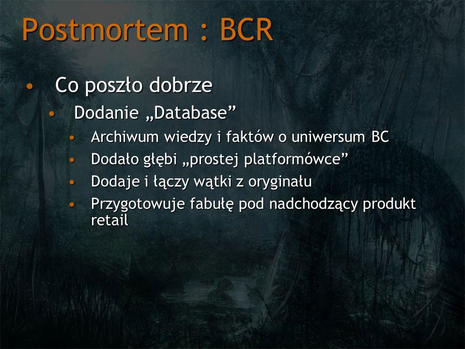 """Postmortem : BCR Co poszło dobrze Dodanie """"Database"""