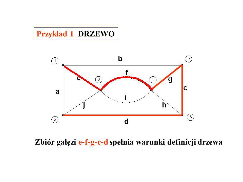 Przykład 1 DRZEWO Zbiór gałęzi e-f-g-c-d spełnia warunki definicji drzewa
