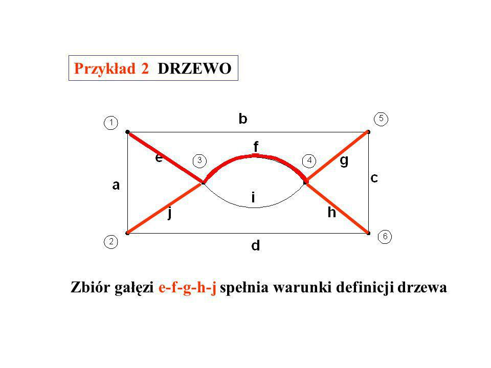 Przykład 2 DRZEWO Zbiór gałęzi e-f-g-h-j spełnia warunki definicji drzewa