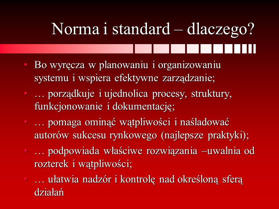 Norma i standard – dlaczego