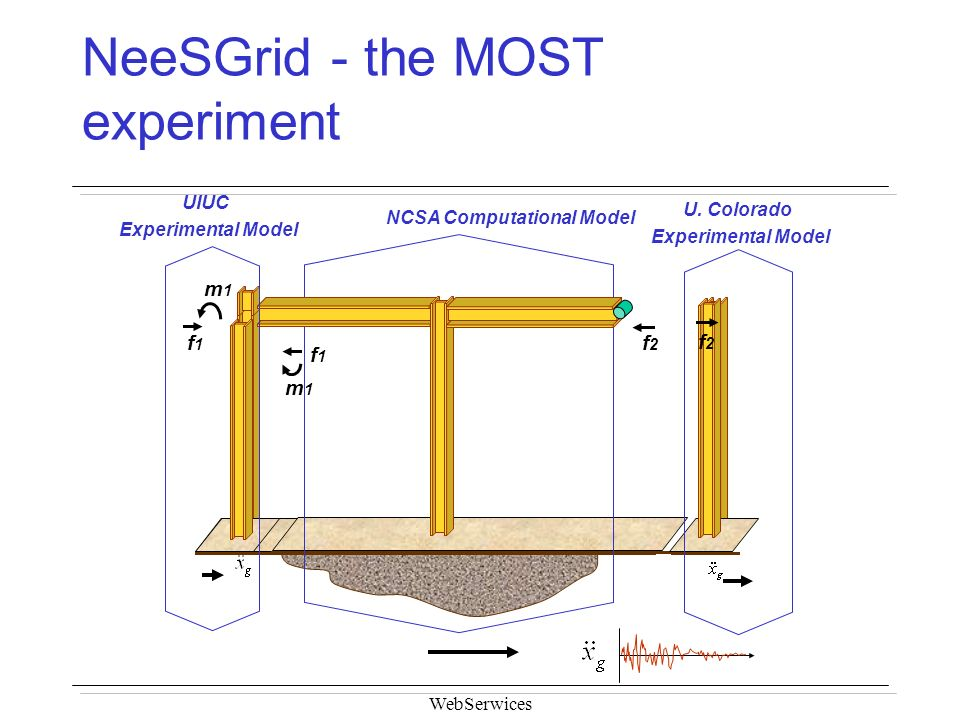 NeeSGrid - the MOST experiment