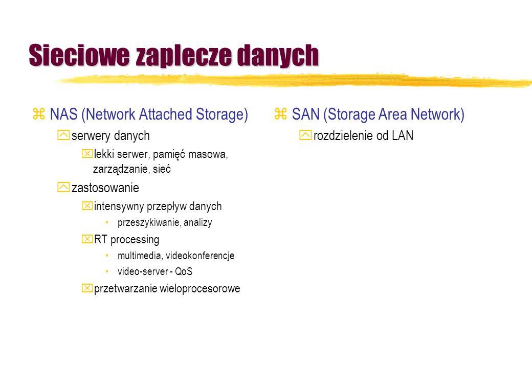 Sieciowe zaplecze danych