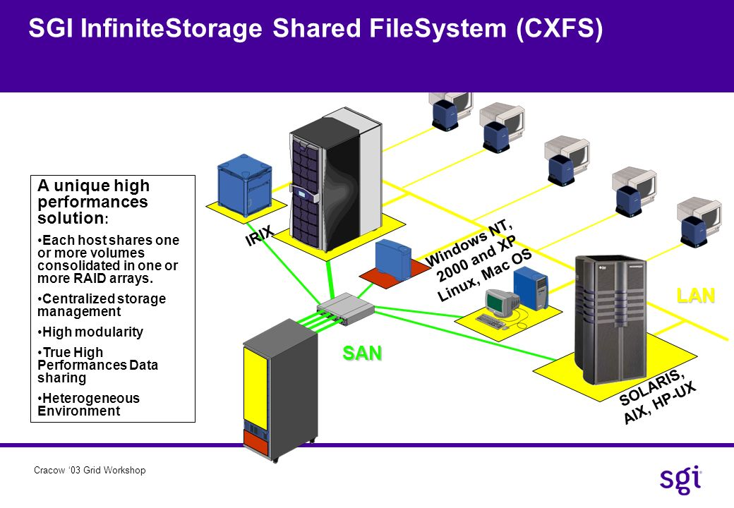 SGI InfiniteStorage Shared FileSystem (CXFS)