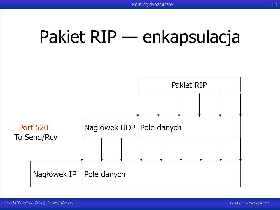 Pakiet RIP — enkapsulacja