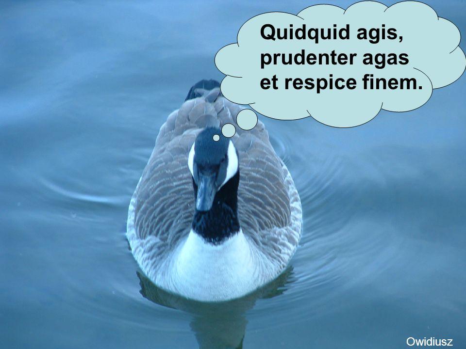 Quidquid agis, prudenter agas et respice finem.