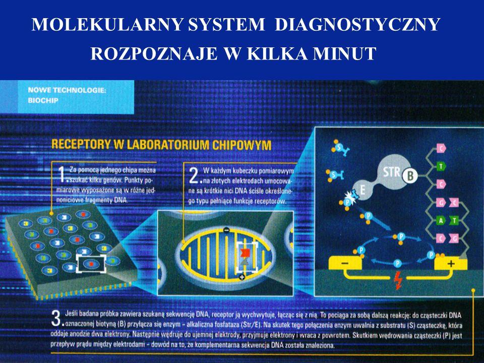 MOLEKULARNY SYSTEM DIAGNOSTYCZNY ROZPOZNAJE W KILKA MINUT
