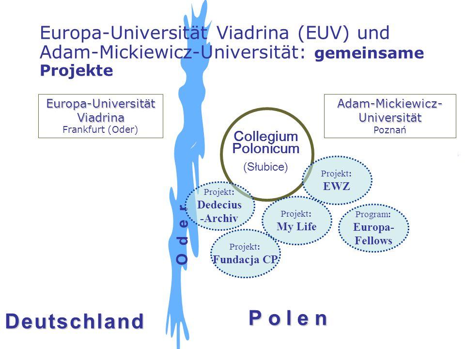 Europa-Universität Viadrina (EUV) und Adam-Mickiewicz-Universität: gemeinsame Projekte