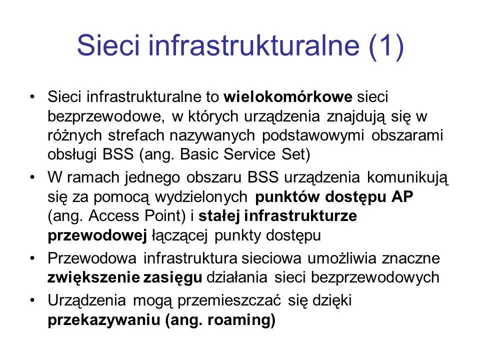 Sieci infrastrukturalne (1)