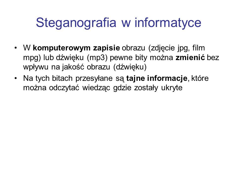 Steganografia w informatyce