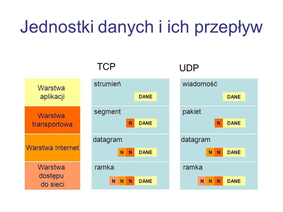 Jednostki danych i ich przepływ