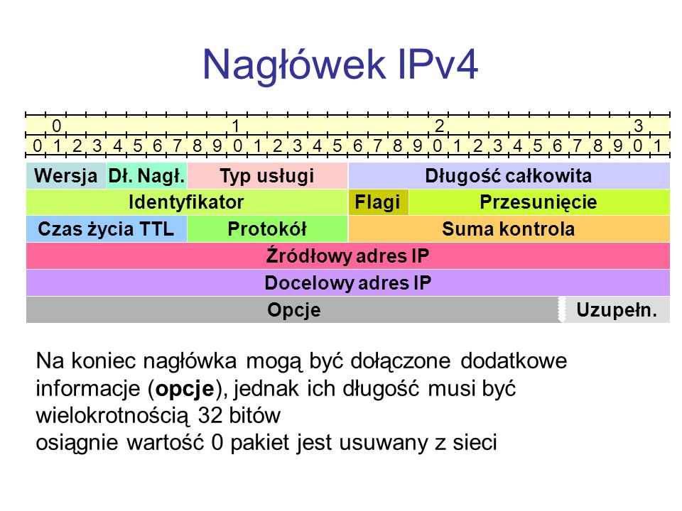 Nagłówek IPv4 0 1 2 3.