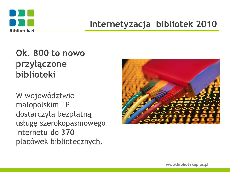 Internetyzacja bibliotek 2010