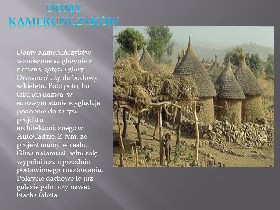 Domy Kameruńczyków