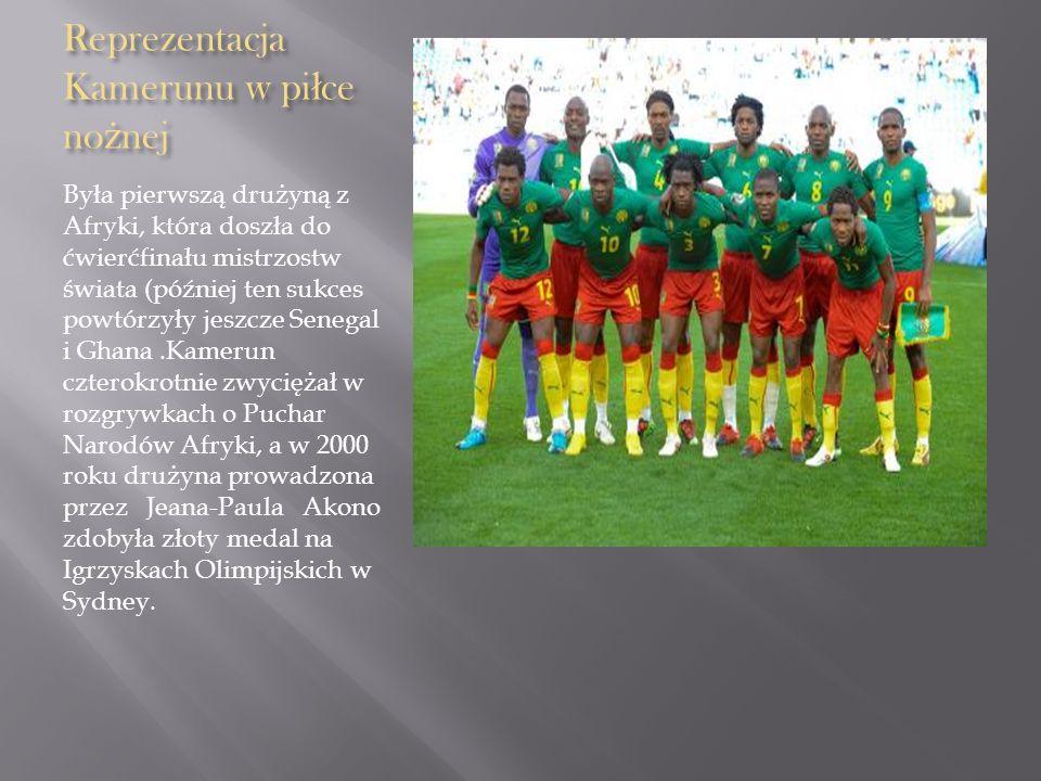 Reprezentacja Kamerunu w piłce nożnej