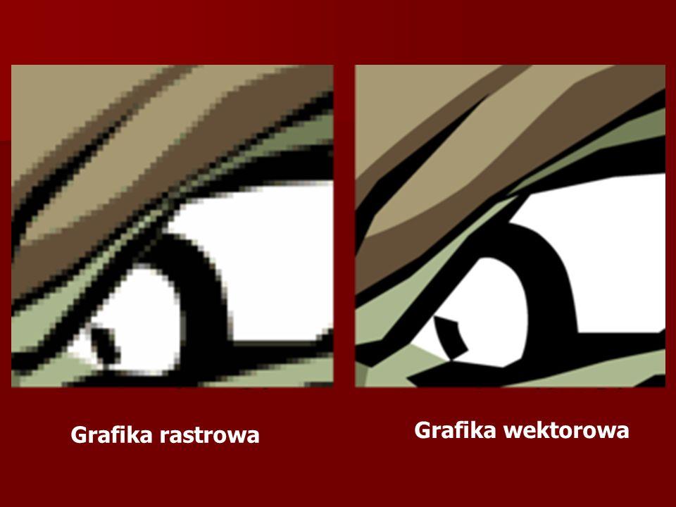 Grafika wektorowa Grafika rastrowa