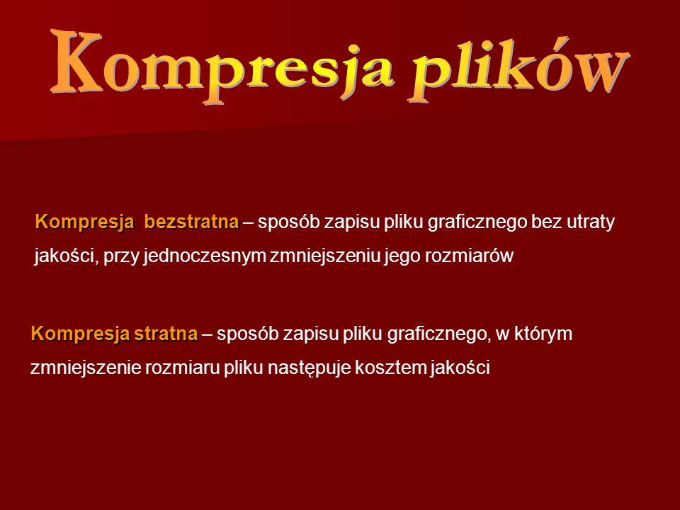 Kompresja plików Kompresja bezstratna – sposób zapisu pliku graficznego bez utraty jakości, przy jednoczesnym zmniejszeniu jego rozmiarów.