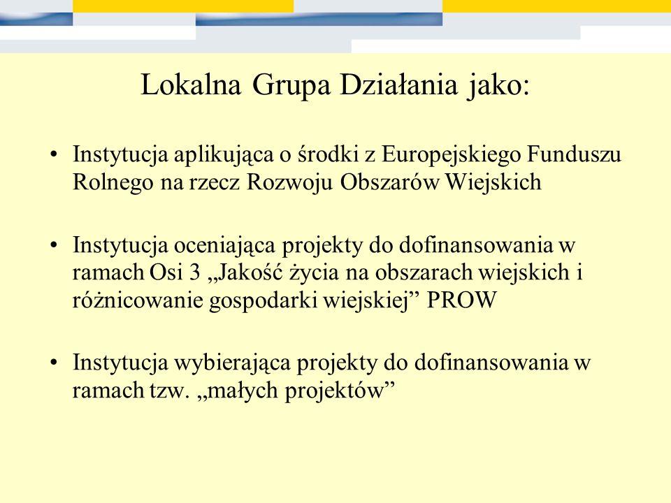 Lokalna Grupa Działania jako: