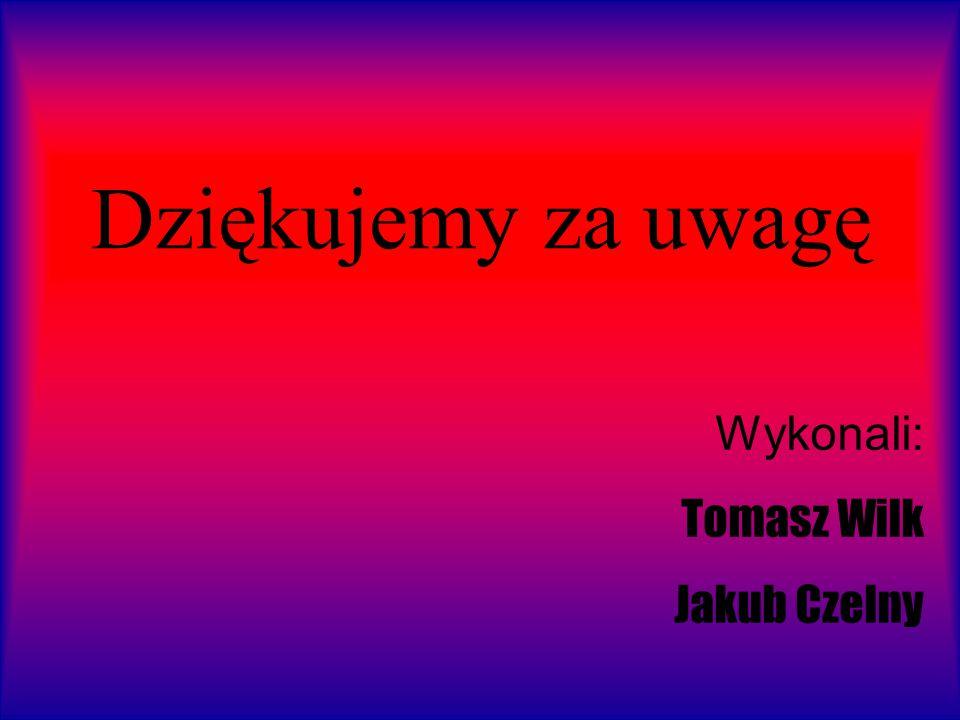 Dziękujemy za uwagę Wykonali: Tomasz Wilk Jakub Czelny