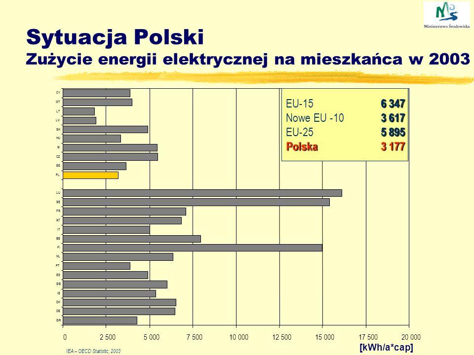 Sytuacja Polski Zużycie energii elektrycznej na mieszkańca w 2003