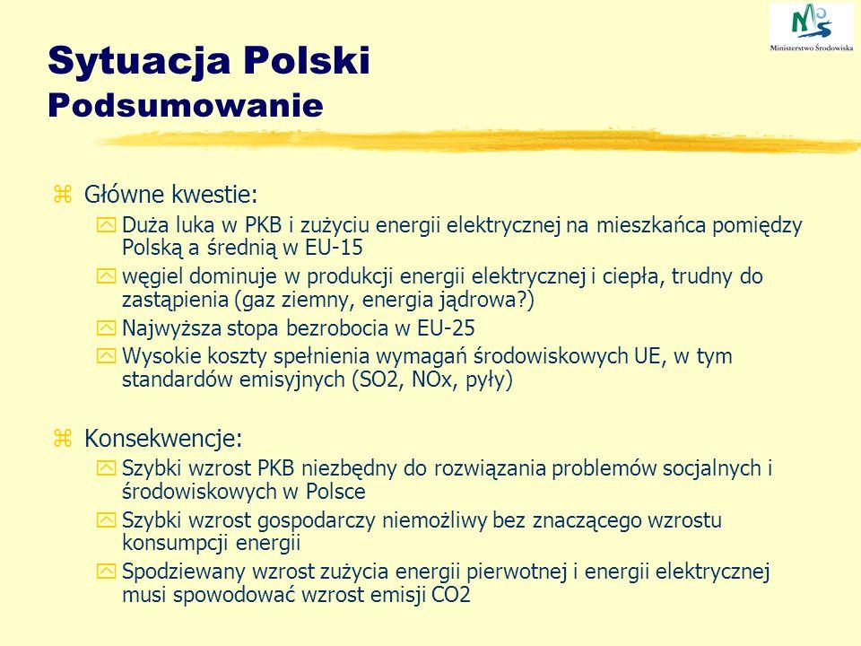 Sytuacja Polski Podsumowanie