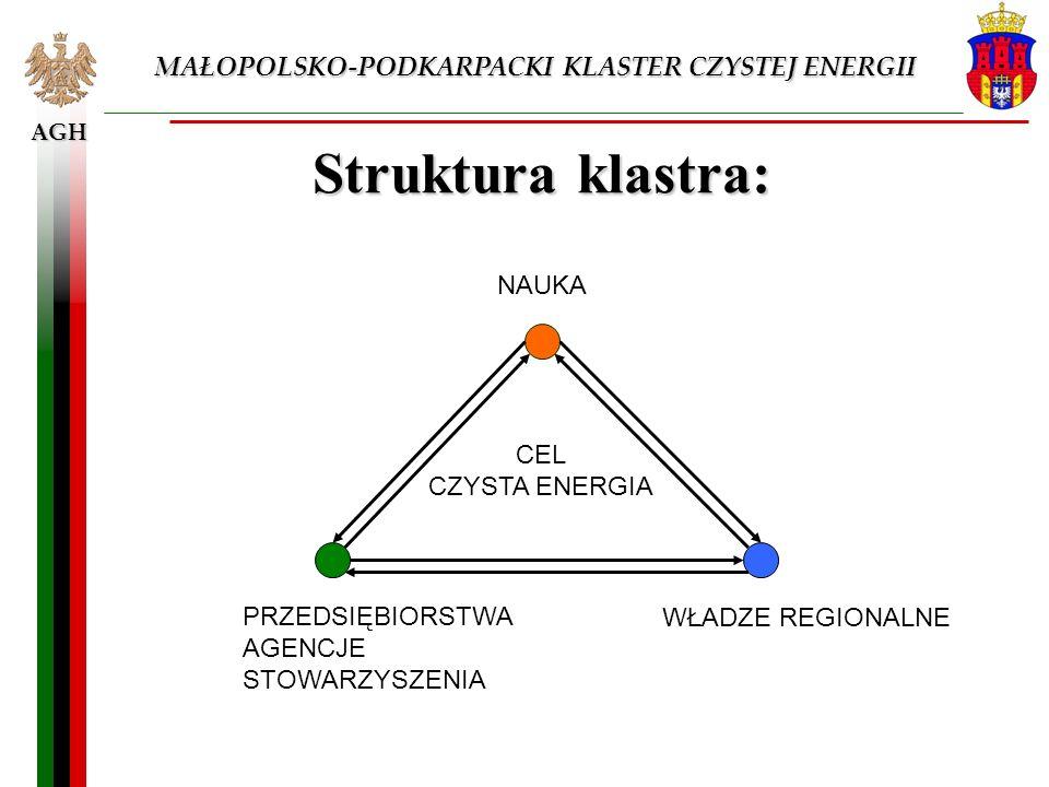 Struktura klastra: MAŁOPOLSKO-PODKARPACKI KLASTER CZYSTEJ ENERGII