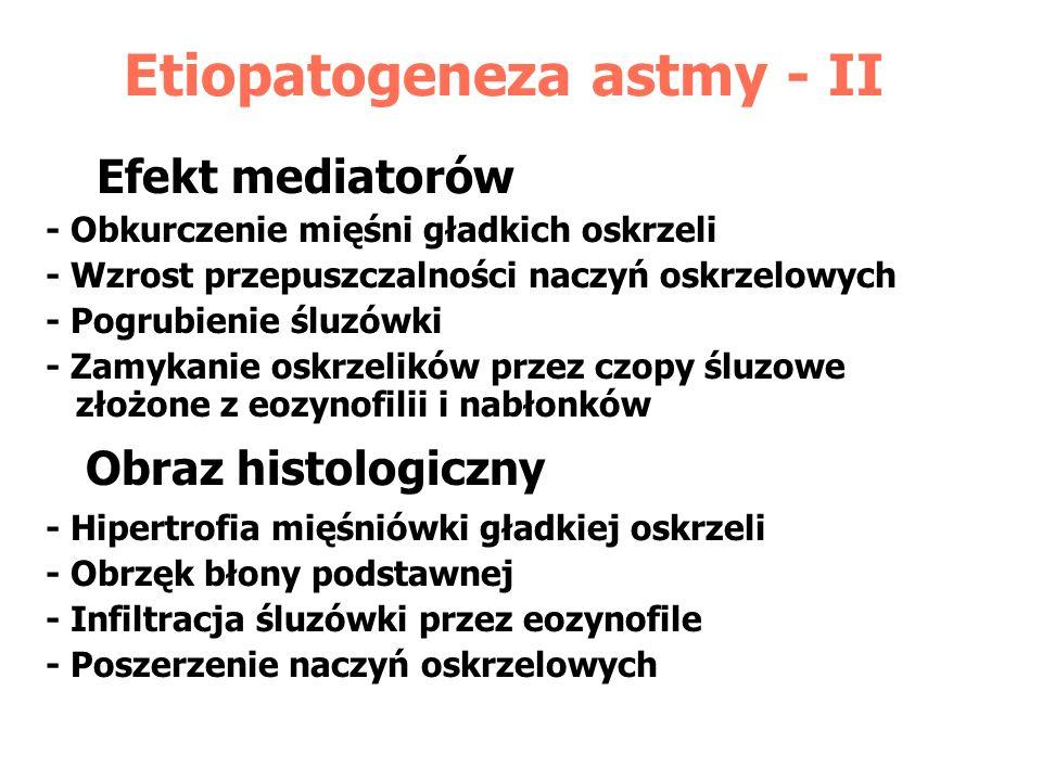 Etiopatogeneza astmy - II