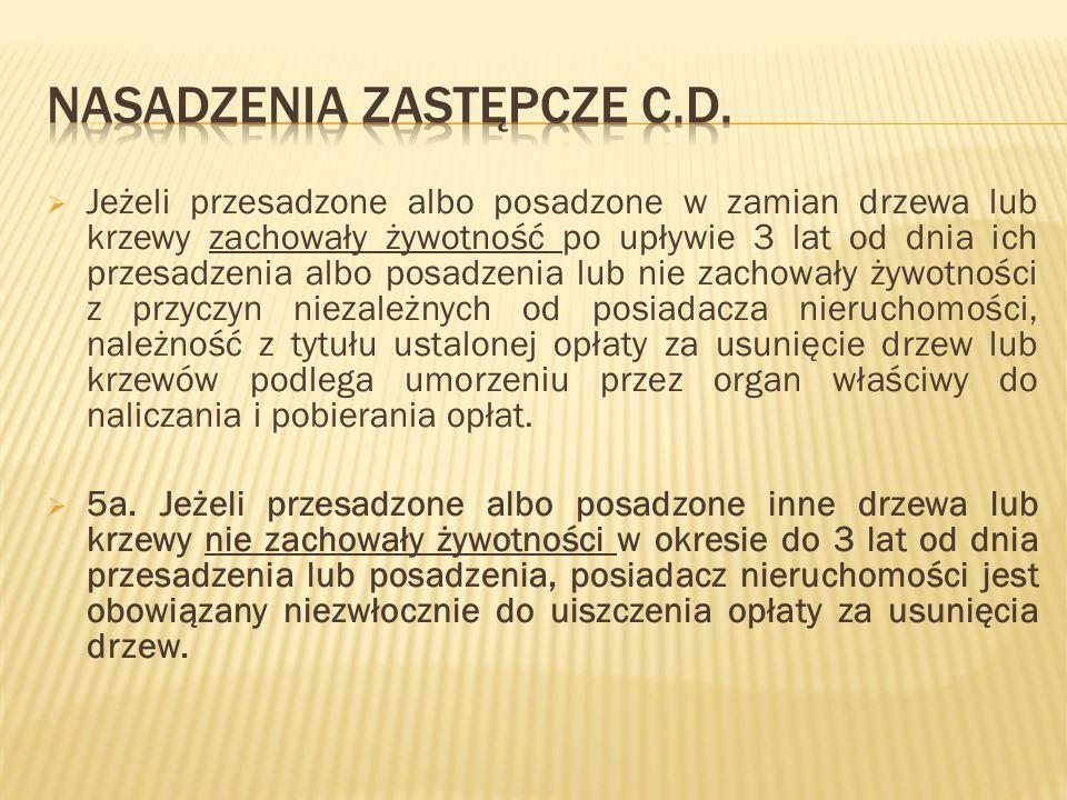 Nasadzenia zastępcze c.d.