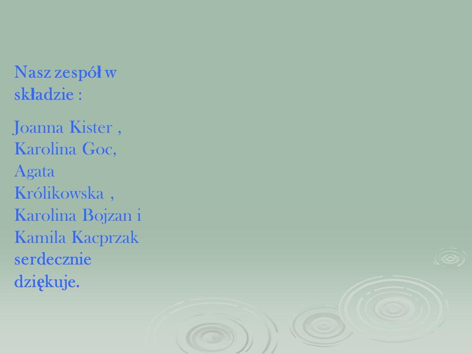 Nasz zespół w składzie :