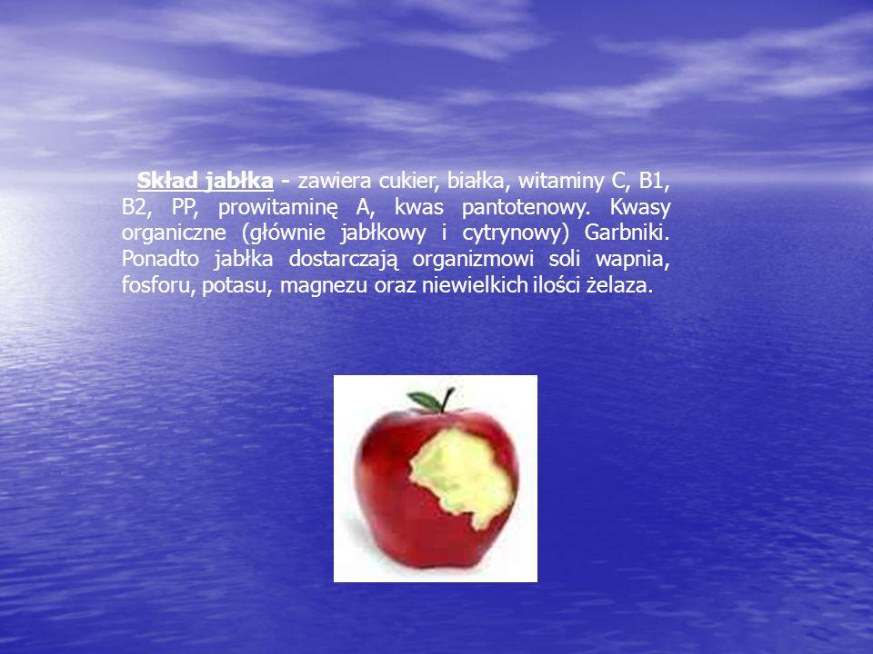Skład jabłka - zawiera cukier, białka, witaminy C, B1, B2, PP, prowitaminę A, kwas pantotenowy.