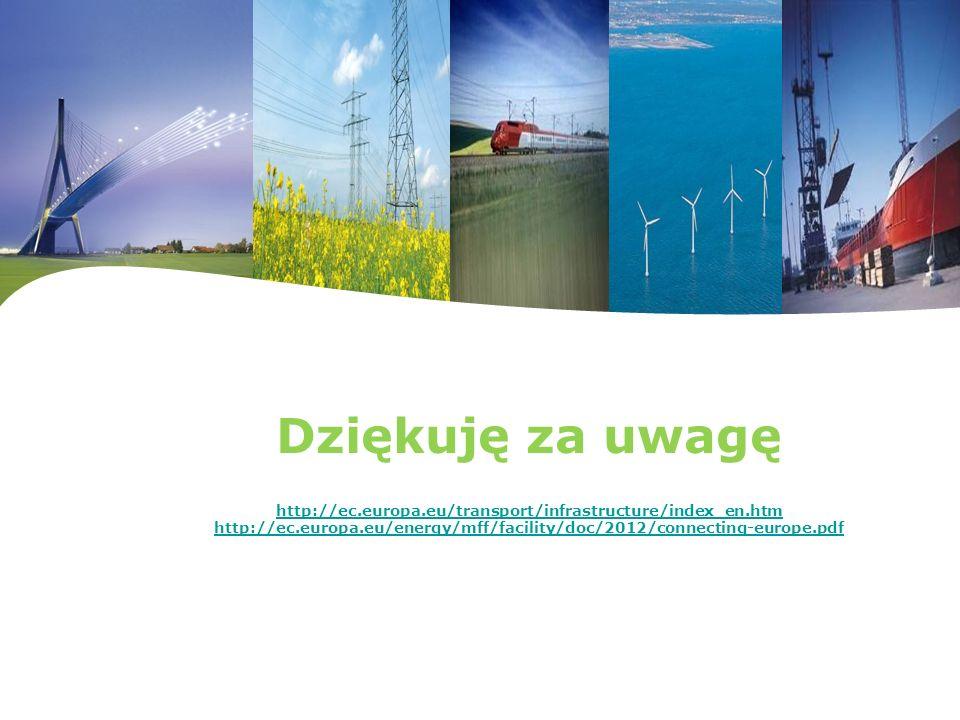 Dziękuję za uwagę http://ec. europa