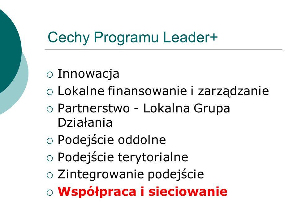 Cechy Programu Leader+