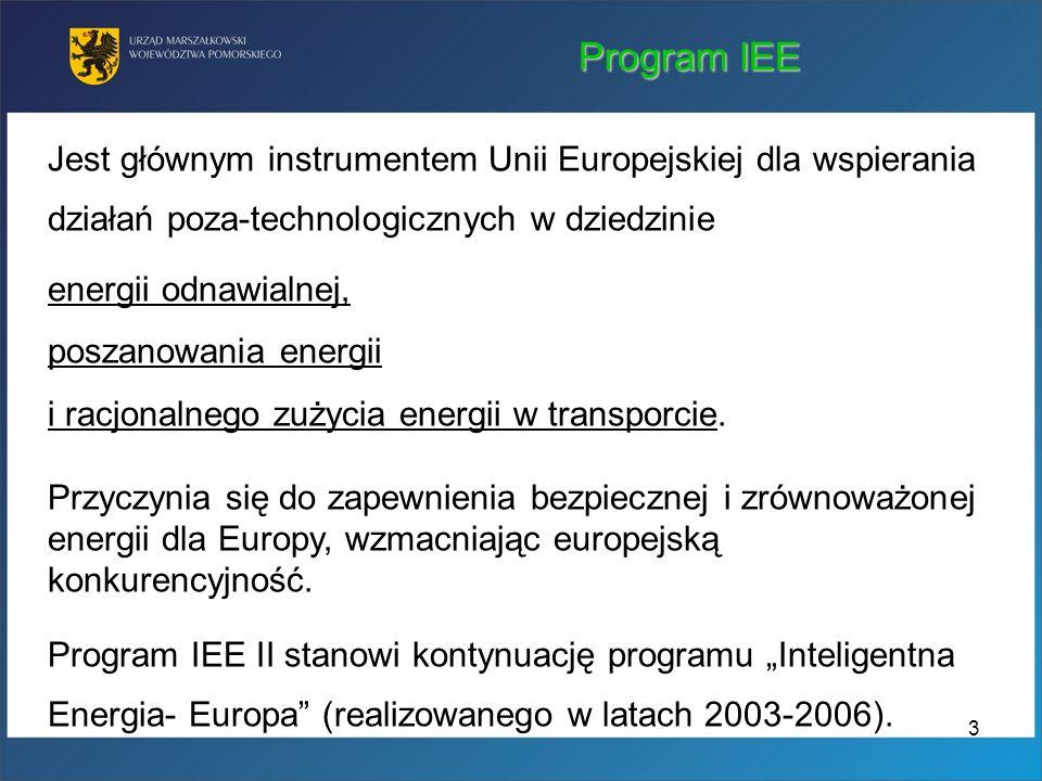 Program IEE Jest głównym instrumentem Unii Europejskiej dla wspierania działań poza-technologicznych w dziedzinie.