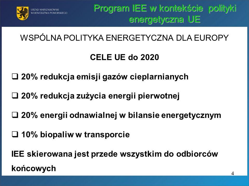 Program IEE w kontekście polityki energetyczna UE