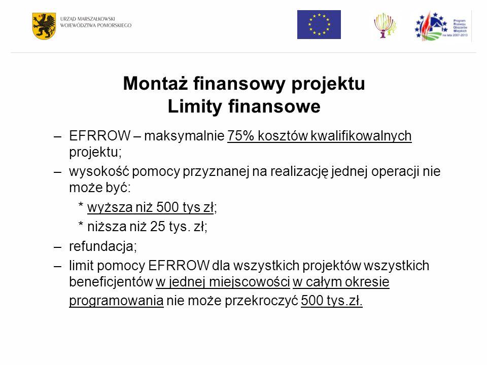 Montaż finansowy projektu Limity finansowe