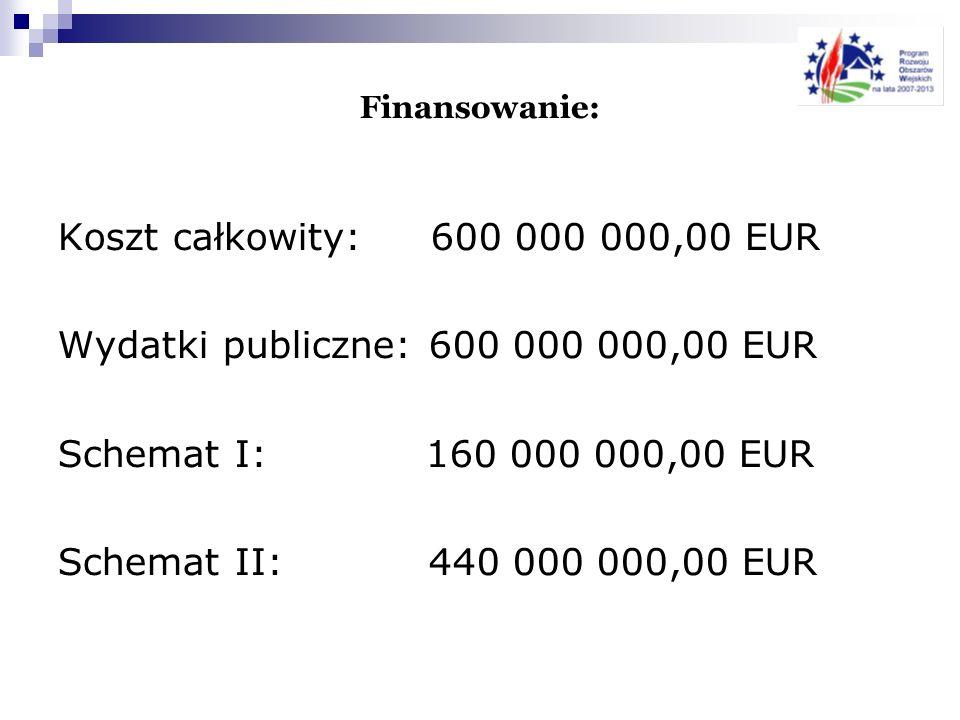 Wydatki publiczne: 600 000 000,00 EUR Schemat I: 160 000 000,00 EUR
