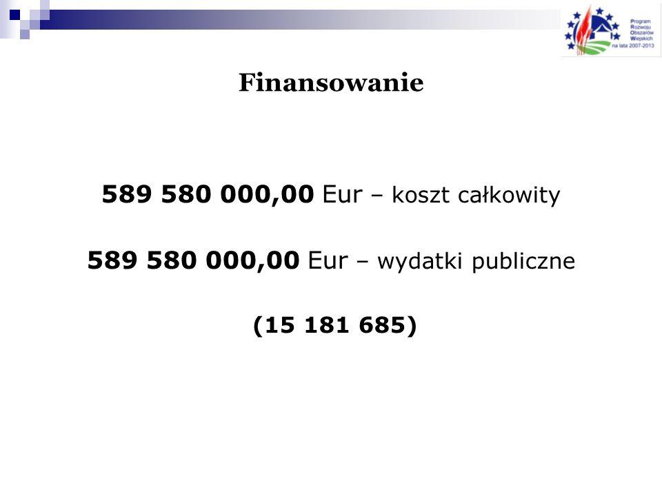 589 580 000,00 Eur – wydatki publiczne