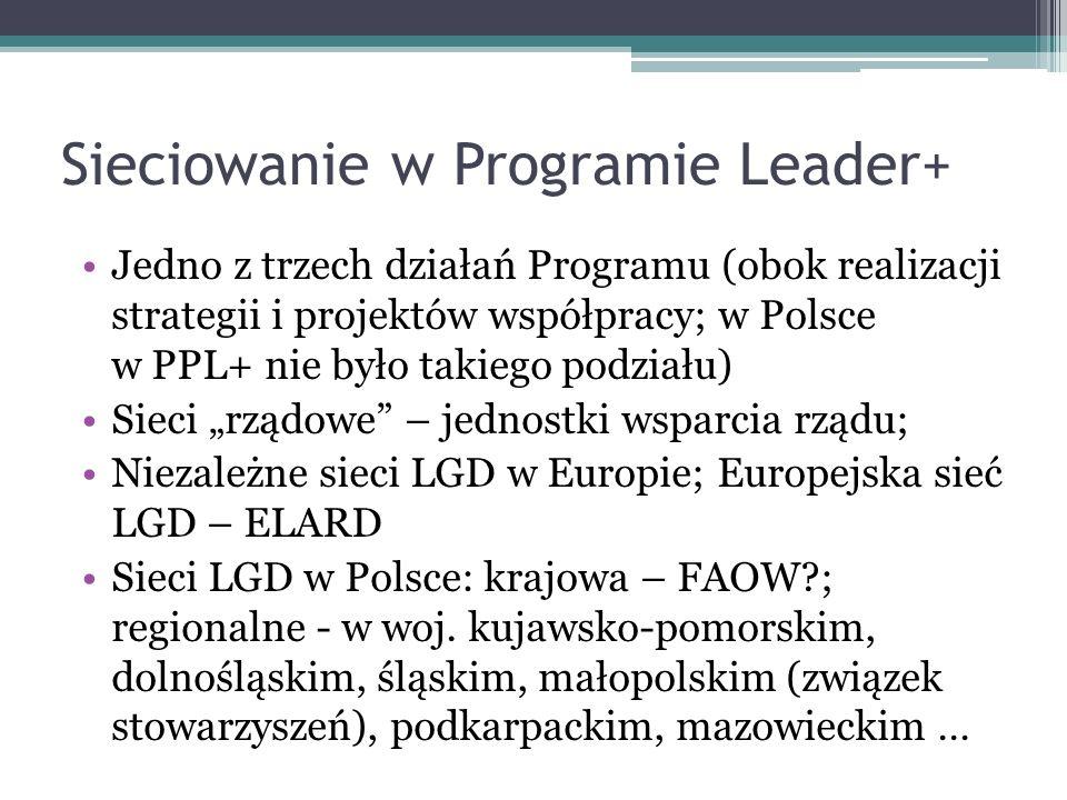 Sieciowanie w Programie Leader+