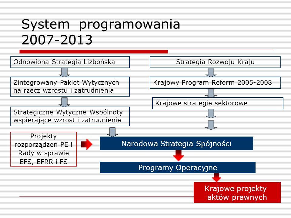 System programowania 2007-2013