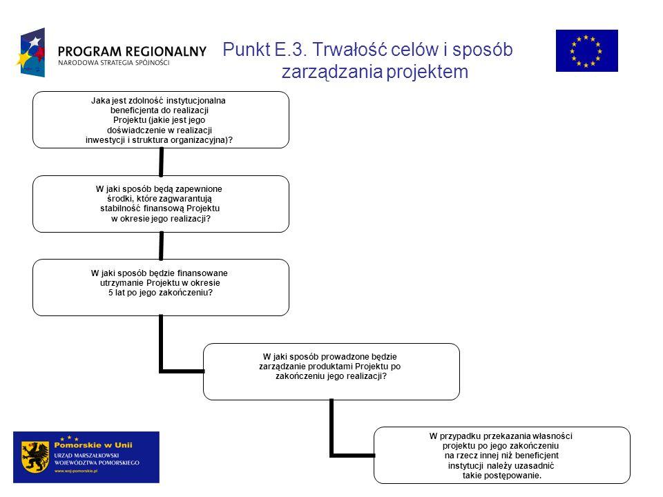 Punkt E.3. Trwałość celów i sposób zarządzania projektem