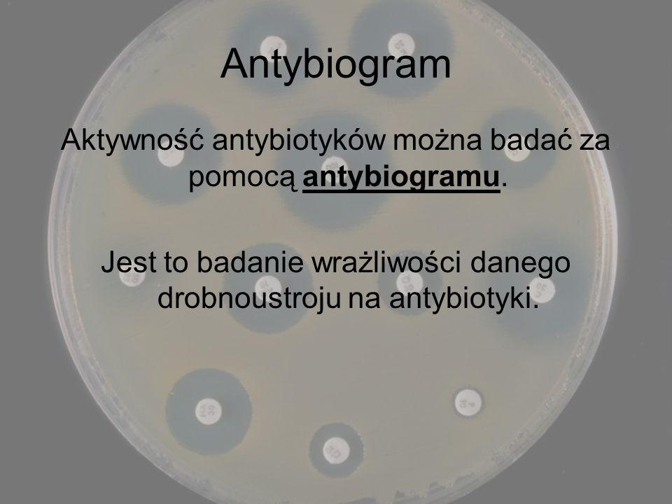 Antybiogram Aktywność antybiotyków można badać za pomocą antybiogramu.