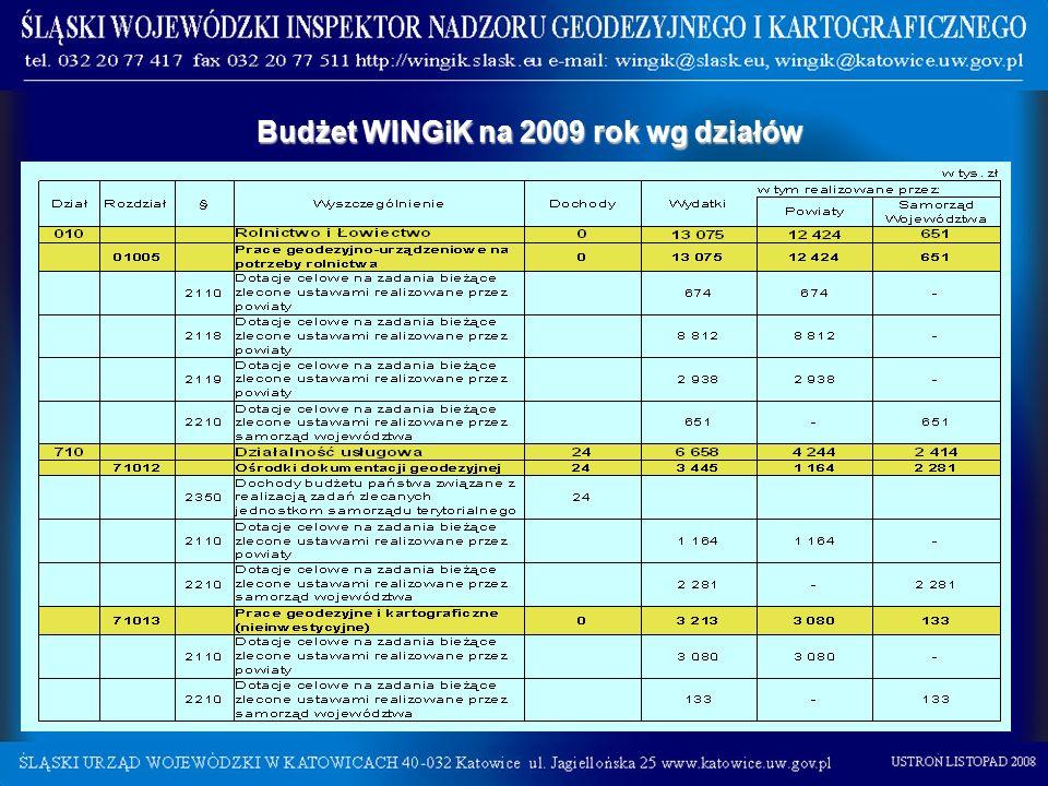 Budżet WINGiK na 2009 rok wg działów