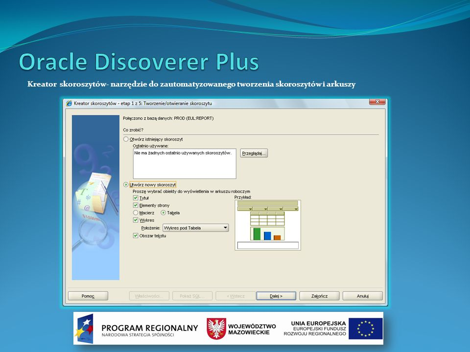 Oracle Discoverer Plus