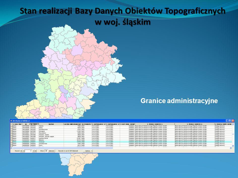 Stan realizacji Bazy Danych Obiektów Topograficznych w woj. śląskim