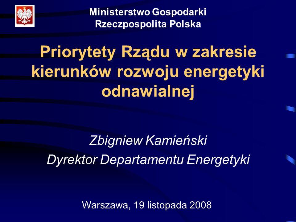 Dyrektor Departamentu Energetyki
